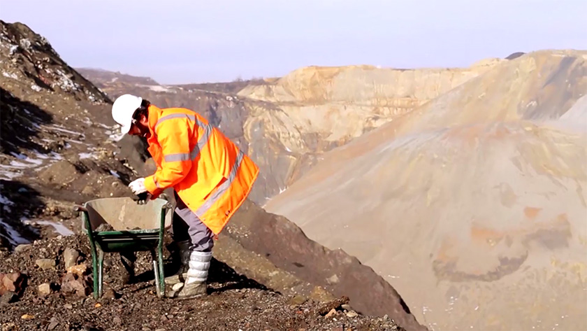 23-mineralizacija