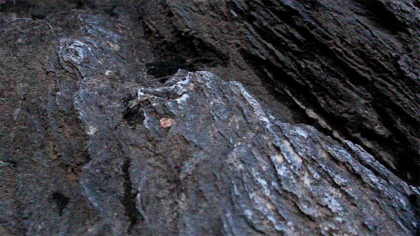 26-mineralizacija