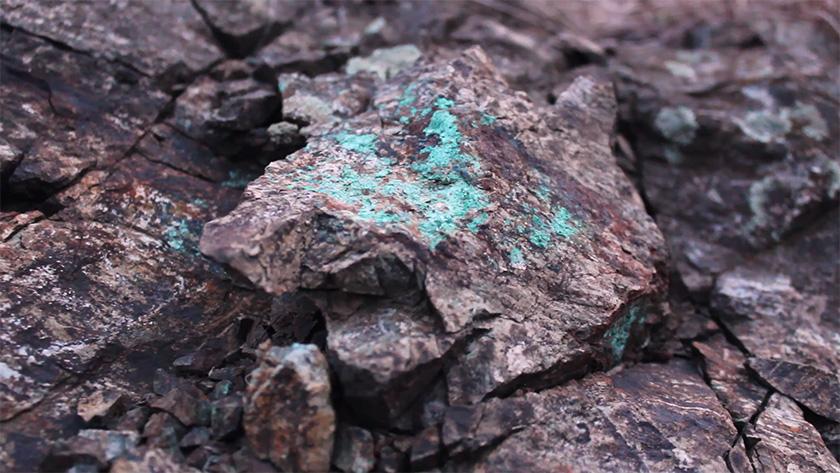 31-mineralizacija